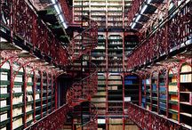 Biblioteca / by Dara Villonco
