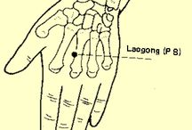 Chinese Medicine / Traditional & Classical Chinese Medicine, etc
