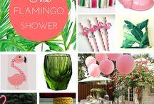 Crazy for Flamingos