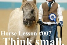 Horse quotes / Quotes about Horses.