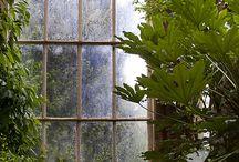 Botanical Victorian Style