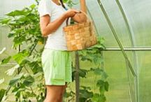 Greenhouse Tips / Helpful tips for gardening in your greenhouse.