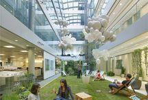 Eco in office