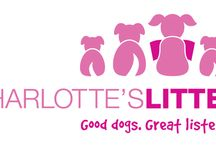 Charlotte's Litter / The Charlotte's Litter program was designed by the parents of Charlotte Bacon, who died tragically on December 14, 2012 with her friends and classmates at Sandy Hook Elementary School.   The program's aim is to advocate for animal assisted activity with Therapy/Comfort Dogs and their roles as supportive friends and trusted companions.