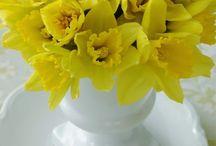 Flower Inspiration / Beautiful Flower Arrangements, Flower arrangement ideas, flower inspiration
