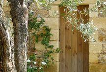 portes bois