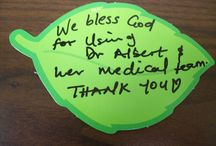 Tree of Thanks 2014 / What our staff and patients were thankful for in the fall of 2014