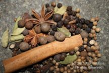 Herbs: Drinks, decoctions, infusions and other tasties