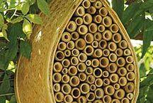 bijen...vlinders