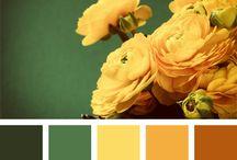 nej barvy