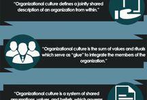 organizational culture/values