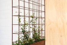 greenwalls/vertical gardens, potplants