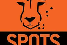 help stichting Spots and save the big cats