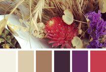 Kleuren palet voor CAL 2015 / Ideeën voor cal
