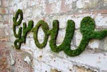 grow / gardening and garden art / by Jill Loy