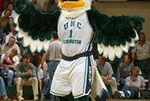 Seahawk Spirit / by UNCW Bookstore
