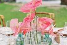 wedding aqua&coral