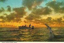 My PC/Bahamas