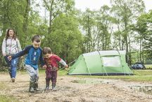 New Forest Safari's Camping Sites / Our recommended campsites to enjoy whilst you're on Safari!