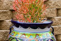 Container Gardening & Hanging Baskets / Such a popular trend!  Gardening in pots, hanging baskets, globes or other containers.