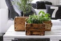 pallet meubelen / tuin meubelen zelf maken