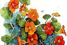 Inge Look / Drawings by Inge Look