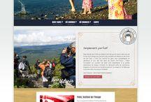 Portfolio / http://www.kaleidos.ca/projets-web/