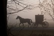 Amish / by Sara Grandi