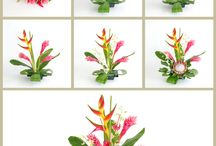 Akala Hula Flower Arrangement DIY / Step by step Hawaiian flower arranging. Akala Hula with king protea, heliconia, ginger, anthurium and orchids. http://www.withouraloha.com/blogs/