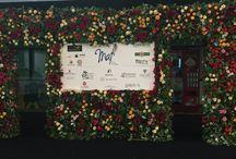 MAF 2016 / Mejor Artesano Florista. La competición entre floristas con 10 pruebas 100% sorpresas patrocinada por Interflora España que determina el Mejor Artesano Florista de cada año.