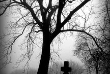 cemeteries / graveyards