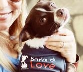"""""""Here Puppy Puppy Puppy"""" / bringing awareness to animal abuse and neglect. support Barks of Love Animal Rescue.  www.barksoflove.org or www.facebook.com/barksofloveoc / by Rebecca Lynn G"""