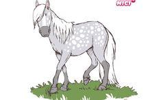 pferderassen comic
