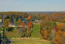 Experience Fall in River Country / Vibrant colors and fun activities make fall a great time to visit southwest Michigan.