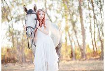 Fairy rail paarden