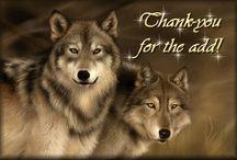 Thank you / Danke