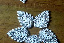 koralky-listy,kvety