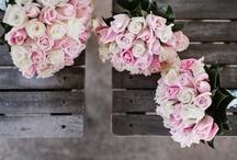Flowers.... / by Lucila Sedano