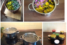 Recipes out of nature / Here I'll place recipes where main ingredients are taken from nature
