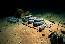 Archeology - Ship Wrecks / by Danny Smith
