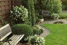 Kert,Garden