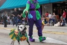 Mardi Gras Fun, Food & Crafts / Crafts, activities, events, food and craft supplies for Mardi Gras / by Cottage Crafts Online {Ribbons for DIY}