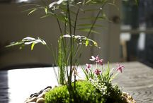* Centros tipo ikebana