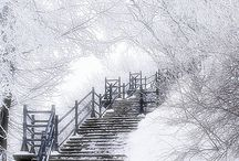 Brrrr....c'est l'hiver !