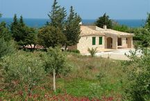 Our villas in Sicily / DreamSicilyVillas is a selection of beautiful villas with pool, with private access to the sea, large villas for groups, and with seafront position in western Sicily.