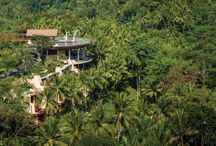 Beautiful Bali / From Ubud's rich rainforest landscapes with rice paddies, monkey forests and ancient temples, to Seminyak's coast front, there's something for everyone in Bali!