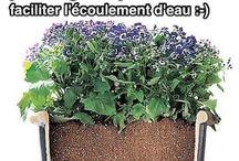 astuce jardinage