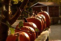 It Smells Autumn !!