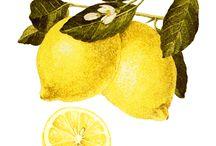 Lemons / lemons and more