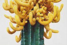 rzeźby kaktusy